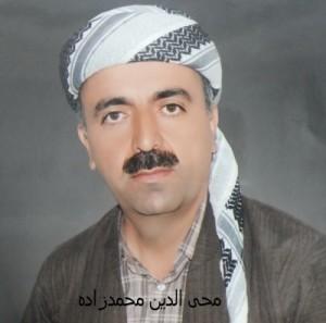 محی الدین محمدزاده