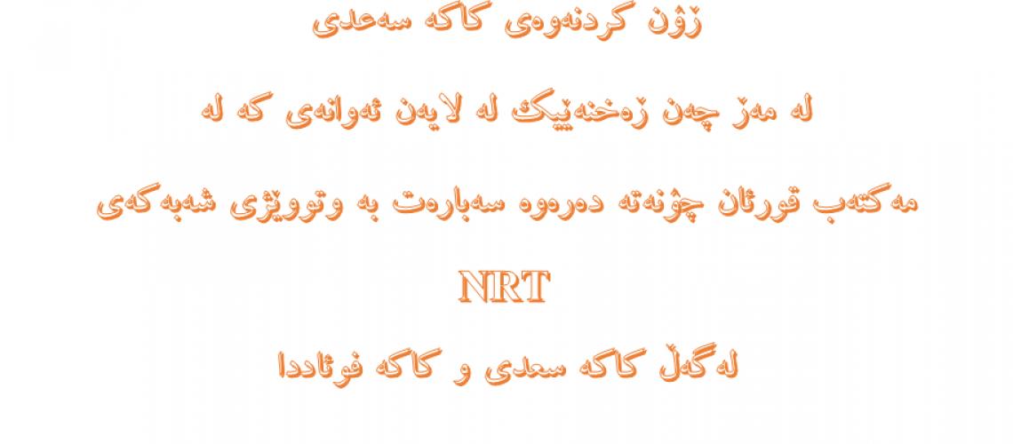 ڕون کردنەوەی کاکه سەعدی  له مەڕ چەن ڕەخنەیک سەبارەت به وتووێژی شەبەکەی NRT
